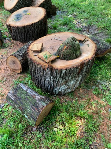 All it takes is a little wood to spark kids' imagination.