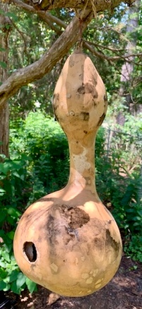 Birdhouse Gourd